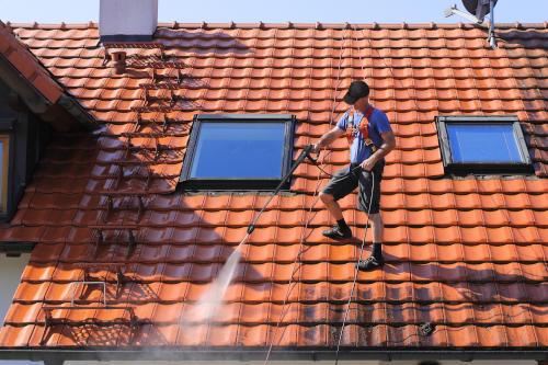 nettoyage et entretien des toits